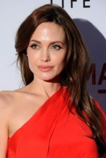 Angelina Jolie Side Parted Layered Brown Hairstyle
