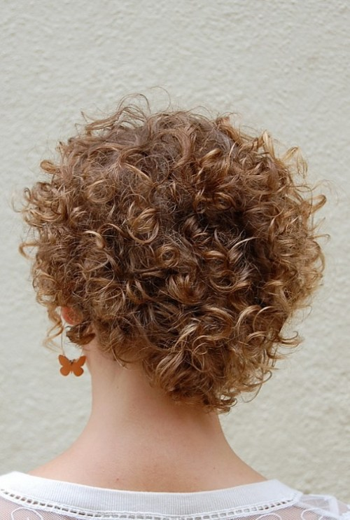 Back View of Short Curly Hairstyle for Women