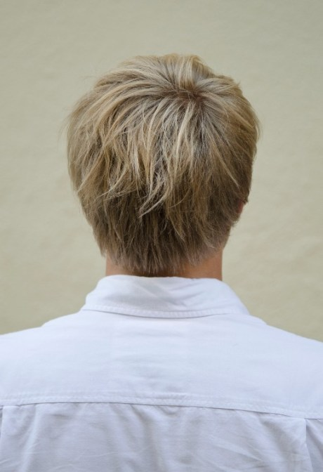Back View of Short Haircut for Men: 2013 - 2014 Short Hairstyle for Guys