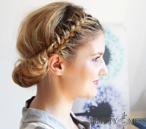 Double Braided Updo Hairstyle