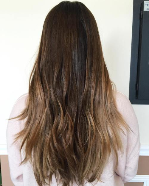 Straight Hair with Blonde Highlights