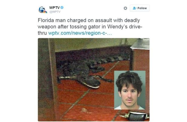 88181722 alligator 1 - Florida man charged with 'throwing alligator' into fast-food restaurant