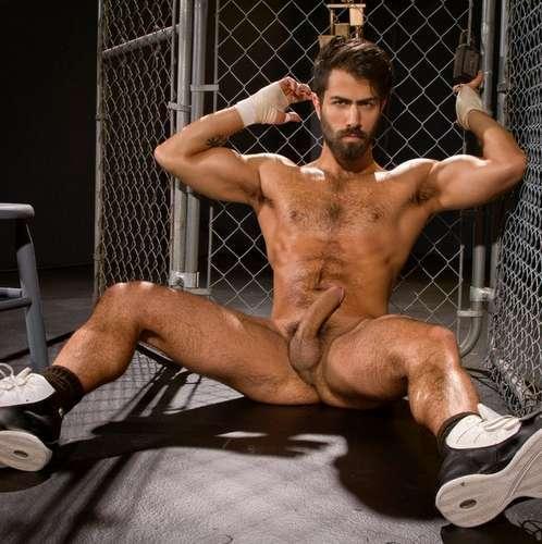 hairy gay porn star adam ramzi