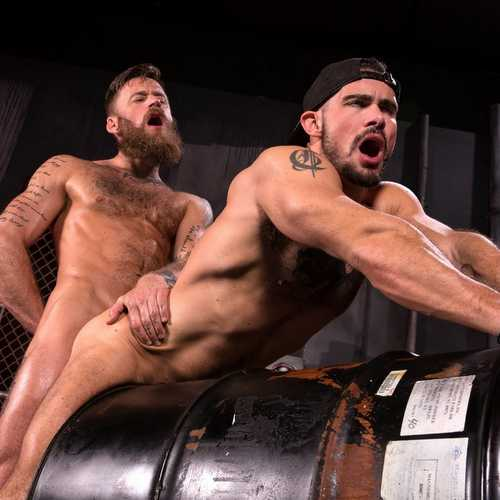bearded stud hoytt walker drills aarin asker