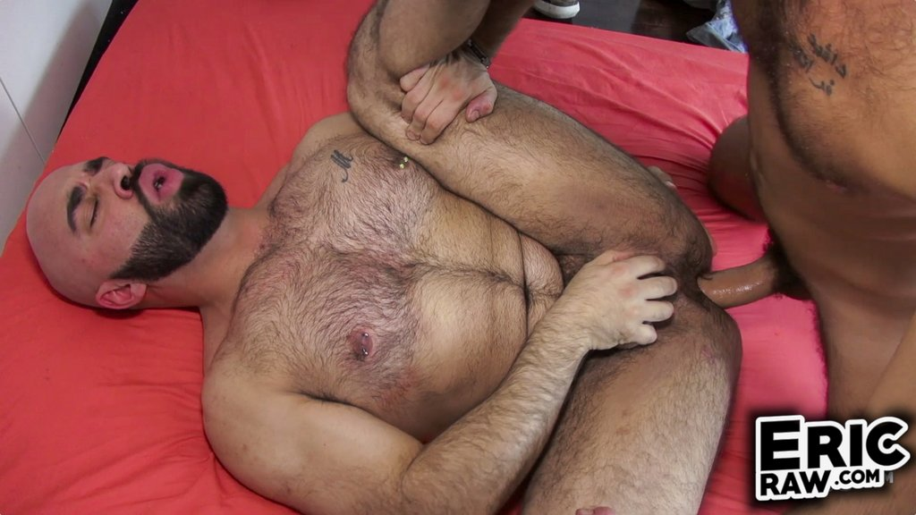 Malik XXL Breeds Angelo Hard 02
