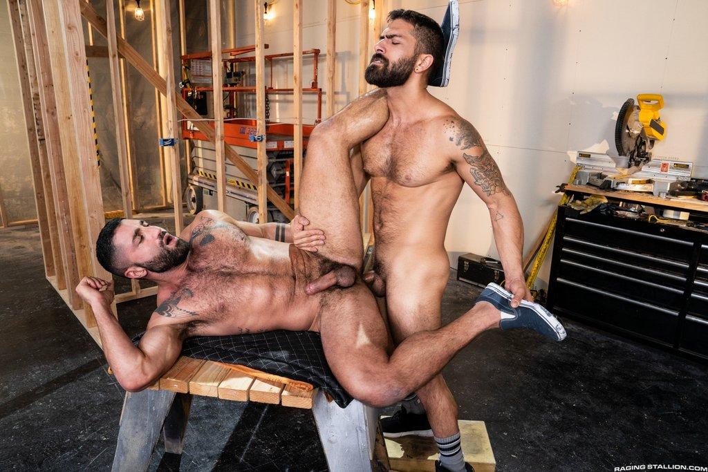 Adam Ramzi Breeds Sharok 01
