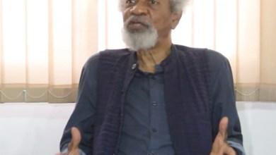 Le Nobel de littérature nigérian Wole Soyinka1