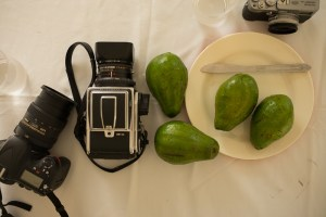 Photo of Camera and Avocados