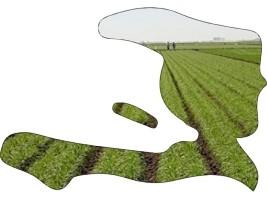 L'opérationnalisation des fermes agricoles de l'État, un impératif pour la relance effective de l'agriculture !