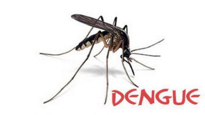 Haïti-Santé: 18 cas de fièvre dengue recensés par le MSPP