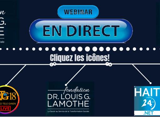 3e WEBINAiRE de La Fondation Dr Louis G. Lamothe et l'Institut Amadeus