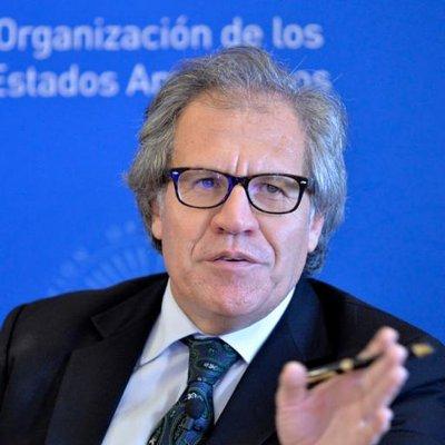 L'OEA continue d'appeler à la tenue des élections en Haïti