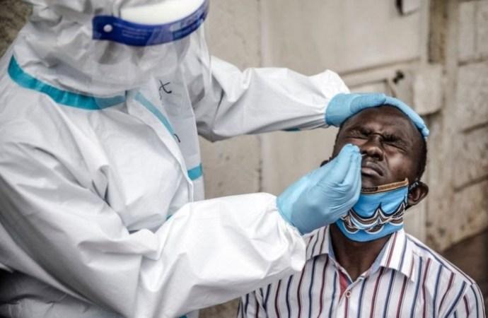Coronavirus : 14 nouveaux infectés, un total de 8376 cas confirmés