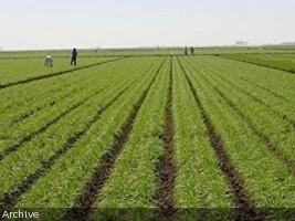 Agriculture : le projet AREA touche à sa fin