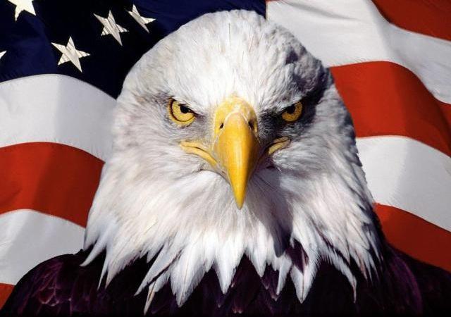 Réforme constitutionelle : les États-Unis veulent d'abord la mise en place des institutions démocratiques