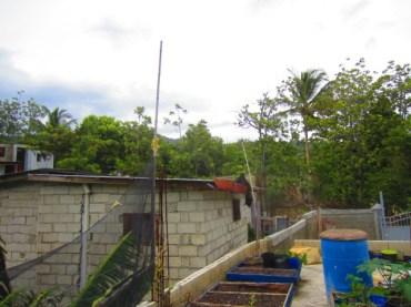 rebuilding rooftop garden after hurricane issac