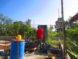 innocent helping rebuild bamboo frame