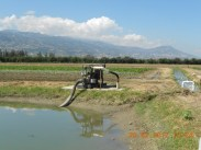 excess water from tilapia ponds use for irrigation