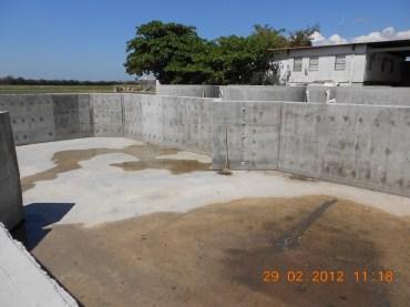 new tilapia ponds