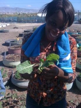 Rochelle happy transplanting swiss chard