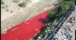 Le gouvernement annonce une enquête après le déversement des produits colorants dans le lit de la Rivière grise par la compagnie Tropic S.A