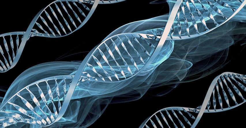 """""""Ya Hafiz"""" Diyen Genetik"""
