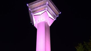 五稜郭タワーをピンクにライトアップ