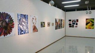 【11/6~10】函館アートフェスティバル2014