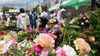 【2016/6/11・12】はこだて花と緑のフェスティバル2016