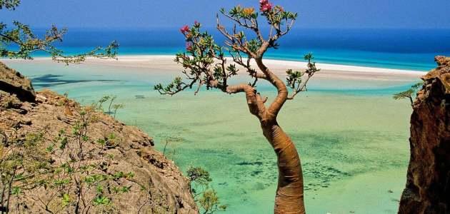 كم عدد جزر أرخبيل سقطرى و معلومات عن جزر أرخبيل سقطرى