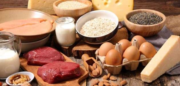 الفرق بين الفيتامين والبروتين ومصادر الحصول عليه