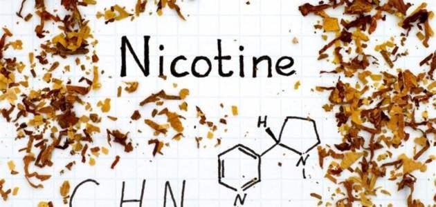 ما هي فوائد النيكوتين استخدام النيكوتين في مواجهة فيروس كورونا