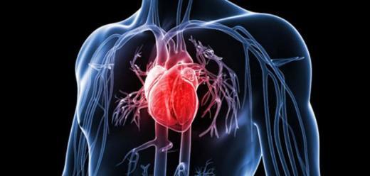 ما هي اعراض امراض القلب التاجية