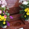 お墓参りの花にマナーはある?値段や種類での選び方や片付け方