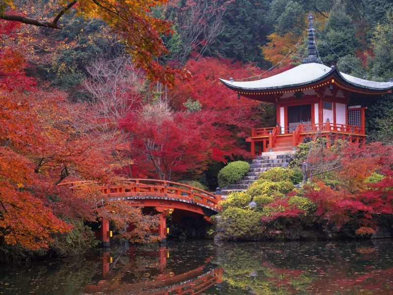 kyoto gets the best city award