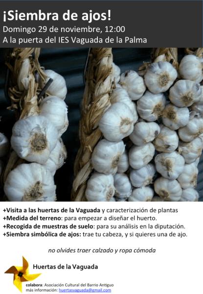 Siembra de ajos en las Huertas de la Vaguada