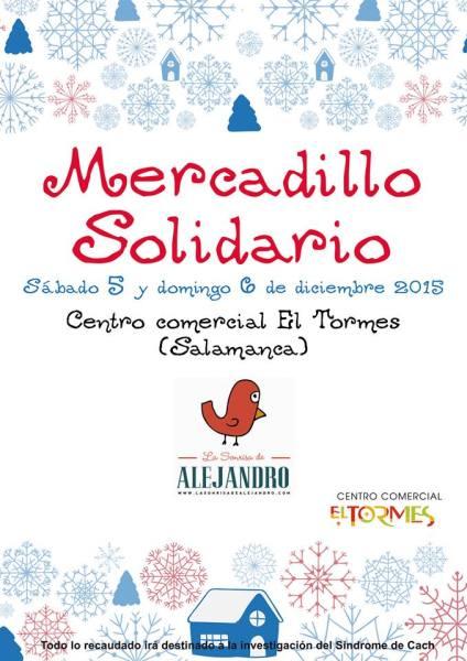 Mercadillo Solidario de La Sonrisa de Alejandro en El Tormes