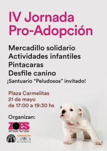Jornada pro adopción de mascotas con la Fundación Luna