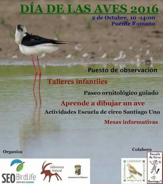 Celebra el Día de Las Aves en el Puente Romano de Salamanca este domingo 2 de octubre