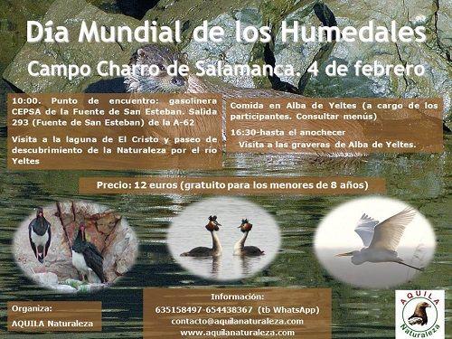 Celebra el Día Mundial de los Humedales con Aquila por la naturaleza del Campo Charro de Salamanca
