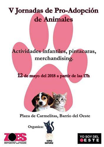 Jornada pro-adopción de mascotas en el Barrio del Oeste