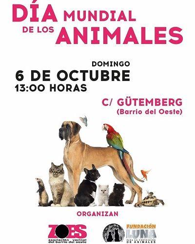Día de los Animales en el Barrio del Oeste con la Fundación Luna y ZOES