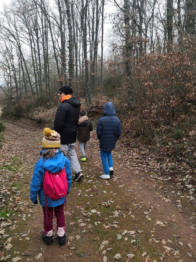 Paseo por el bosque en familia