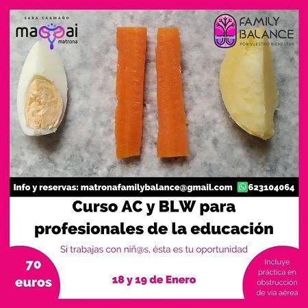 Curso AC y BLW para profesionales de la educación en Family Balance