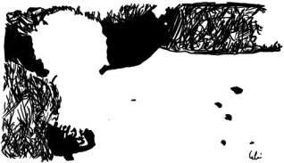 Optische-Täuschung-klin.jpg