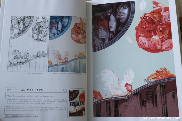 Fables Covers : The Art of James Jean Book