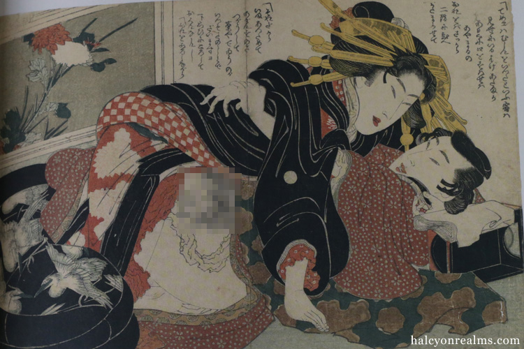 Japanese Erotic Art - The Hidden World Of Shunga Book