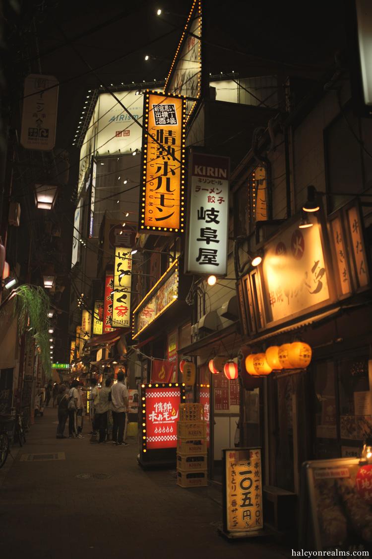 Tokyo Cityscape - From Shibuya To Shinjuku