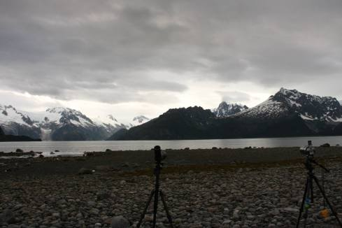Foraging observations at Northwestern Fjords, AK.