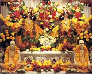 Their produce in the temple - through Srila Prabhupada and his spiritual master (lower altar) to Krsna, in the form of Sri Caitanya Mahaprabhu and Sri Nityananda Prabhu (upper altar). Their produce in the temple – through Srila Prabhupada and his spiritual master (lower altar) to Krsna, in the form of Sri Caitanya Mahaprabhu and Sri Nityananda Prabhu (upper altar).